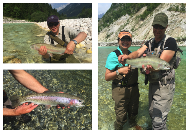 Fin perfect Soča rainbows